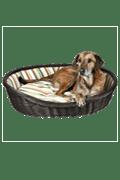Hondenmanden